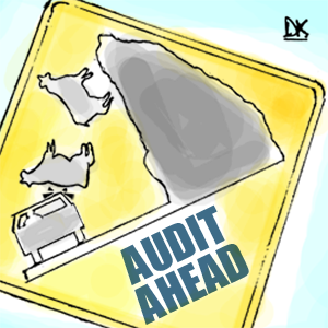Rocky road to appointing the right audit firm